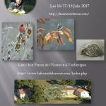 Affiche stage 2017 Lionel Asselineau